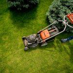 kertész, karbantartó